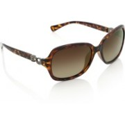 Invu Over-sized Sunglasses(Brown)