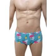 Petit-Q Pina Colada Pineapple & Flamingo Sunga Bikini Swimwear PQ190426