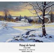 Peisaj de iarna (kit goblen)