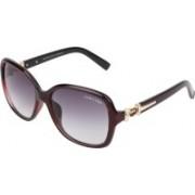 TOMCLUES Rectangular Sunglasses(Blue, Grey)