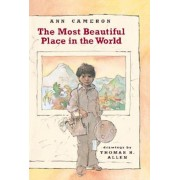 The Most Beautiful Place in the World, Paperback/Ann Cameron