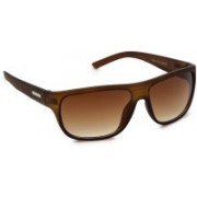 Get Glamr Wayfarer Sunglasses(Brown)