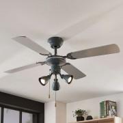 Anneke ceiling fan with light, silver, grey