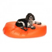 Bean Bags for dogs