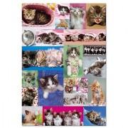 Educa Borras Kitten Collage Puzzle (1000 Piece) One Color