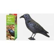 Sperietoare pentru păsări mici (porumbei, mierle, pițigoi, etc.) cu formă de Corb de mărime naturală