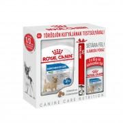 Royal Canin Mini Light Weight Care Pack pentru câini 1 buc.