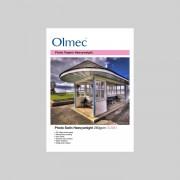 "OLM61 HARTIE FOTO SATIN OLMEC 260g/50 COLI 24"""