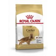 ROYAL CANIN COCKER ADULT - Cocker Spániel felnőtt kutya száraz táp 3 kg