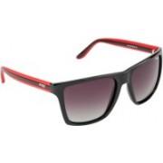 Image Rectangular Sunglasses(Brown, Grey)