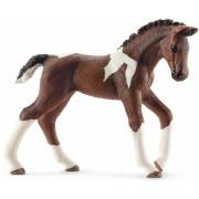 Figurina Animal Manz Trakehner