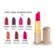 Labial Acabado Mate Color DANGER Modelo 31052 Terramar