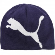 Fes unisex Puma Big Cat Logo Hat ESS N1 Beanie JR 02168407