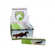 Vitasporal Horse 1 injector