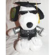 "Hallmark Peanuts Plush 9"" Snoopy Joe Cool 2007 Graduation Doll in Varsity Jacket"