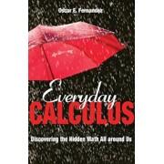 Everyday Calculus: Discovering the Hidden Math All Around Us, Hardcover/Oscar E. Fernandez