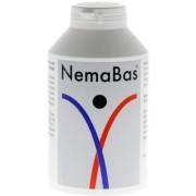 NESTMANN Pharma GmbH NEMABAS Tabletten 600 St