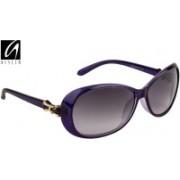 Aislin Over-sized Sunglasses(Blue, Black)
