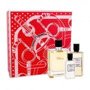 Hermes Terre D´Hermès confezione regalo Eau de Toilette 100 ml + doccia gel 80 ml + acqua dopobarba 40 ml uomo