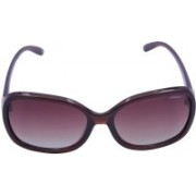 Polaroid Oval Sunglasses(Brown)