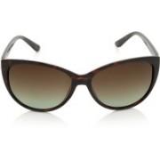 INVU Round Sunglasses(Brown)