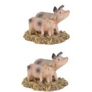 Wonderlnad Miniature fairy garden Two piggy ( Set of 2) (4 x 4 x 3 cm)