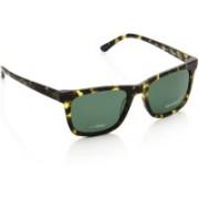 Gant Wayfarer Sunglasses(Green)