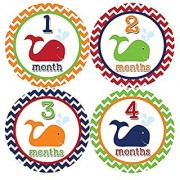 Months in Motion 399 Monthly Baby Stickers Baby Boy Milestone Age Sticker Photo