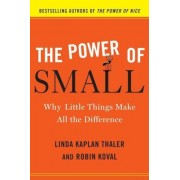 The Power of Small: Why Little Things Make All the Difference, Hardcover