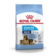 Royal Canin Maxi Starter Mother & Babydog Adult Poultry,Rice 15 kg