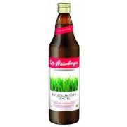 Dr. Steinberger bio Zöldbúzafű koktél, 750 ml