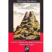 Stalpii tainitei din Muntii Buzaului - Vlad-Ionut Musceleanu