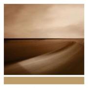 Brian Eno - Small Craft on a Milk Sea (0801061020729) (1 CD)