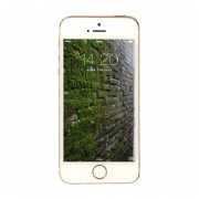 Apple IPhone 5s 16GB-oro
