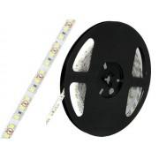 NTR LEDS11CW SMD3528 LED szalag 120LED/m 10W/m 6000K hideg-fehér 1m