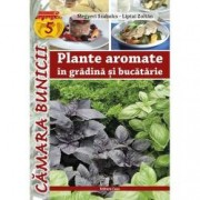 Plante aromate in gradina si bucatarie