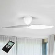 Ceiling fan Wave, white, 126 cm