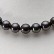 9-11mm 黒蝶真珠 ブラックパール ネックレス (ブラック)