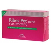 > RIBES PET Recovery 60 Perle