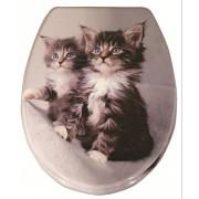Quadrat WC ülőke, duroplast, Cathy (cicakölykök) - Wc ülőkék