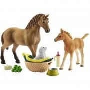 Schleich Horse Club, Sarahes Baby Tierpflege