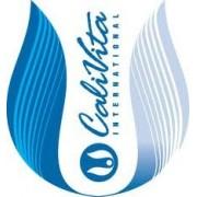 Aquarion Calcium Inserts