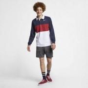 Мужская рубашка-поло с длинным рукавом для скейтбординга Nike SB Dri-FIT