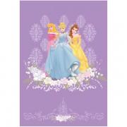 Covor copii Princess model 102 140x200 cm Disney