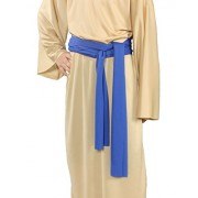 Alexanders Costumes Story of Christ Biblical Sash Child Costume, Dark Blue, One Size