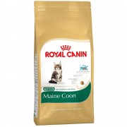 Royal Canin Feline 2 x 3,5 kg/8 kg/10 kg - Pack económico - Indoor Long Hair - 2 x 10 Kg