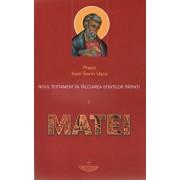 Noul Testament in talcuirea Sfintilor Parinti. Vol. I - Matei/Ioan Sorin Usca