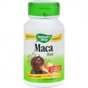 Nature's Way Maca Root - 100 Capsules