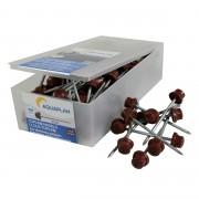Aquaplan nagels voor bitumen golfplaten verzinkt rood 100 stuks