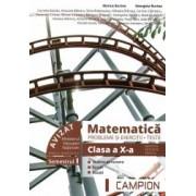 Matematica probleme si exercitii teste clasa a X-a semestrul I. Profil tehnic
